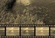 Niesamowita ewolucja koloru w filmach